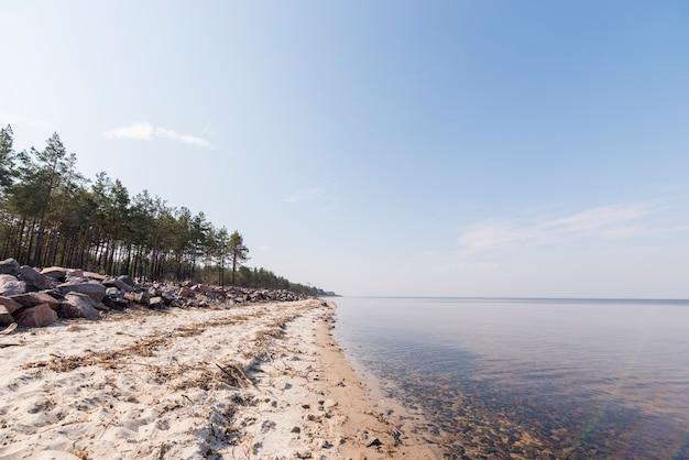 Landschap van strand van het paradijs het tropische eiland met bomen tegen blauwe hemel
