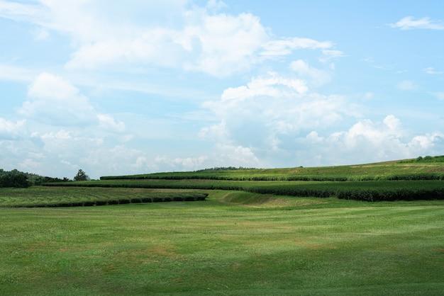 Landschap van uitzicht op de bergen en blauwe hemel, behang natuur concept