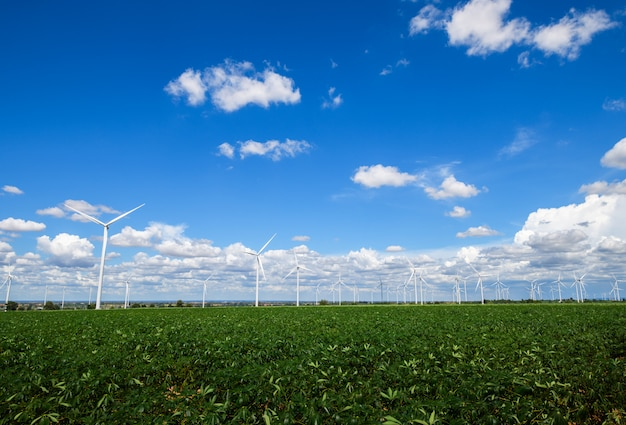 Landschap van windmolens voor stroomproductie op cassavegebied