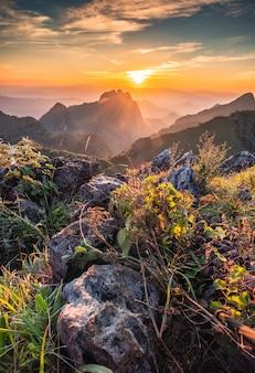 Landschap van zonsondergang op berg bij wildopvang