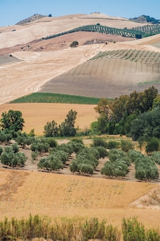 Landschappen van andalusië, spanje