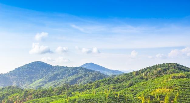 Landschaps groene mountant en blauwe hemel