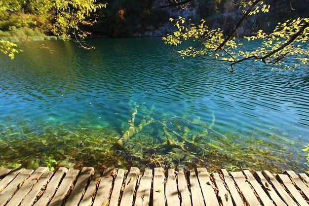 Landschapsmening van bladeren en meer in de herfstseizoen bij het nationale park van plitvice jezera in kroatië.