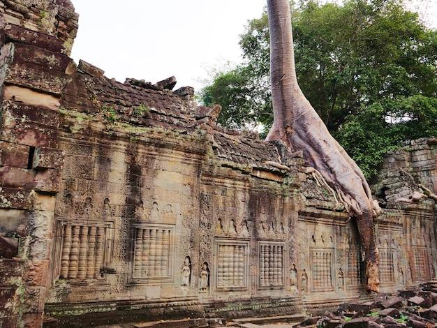 Landschapsmening van gesloopte stenen architectuur en luchtfoto boomwortel bij preah khan tempel angkor wat complex, siem reap cambodja. een populaire toeristische attractie genesteld tussen het regenwoud.