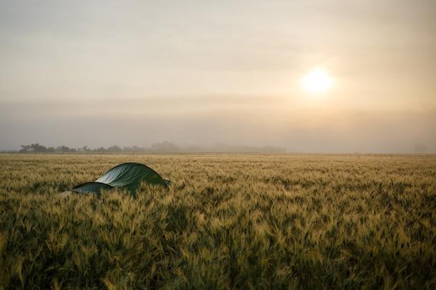 Landschapsopname van een groene kampeertent op een zonnige dag
