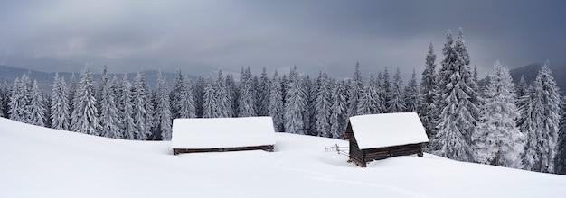 Landschapspanorama van een bergdal in de winter