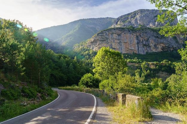Landschapsweg naar de berg met bossen en vegetatie. rust en vrije tijd om van de natuur te genieten.