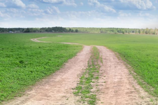 Landschapsweg op het platteland op zonnige zomerdag