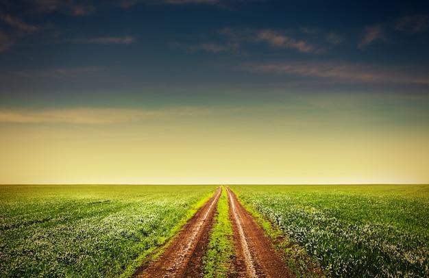 Landweg door de velden, getinte foto