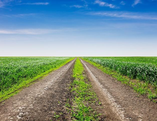 Landweg door de velden