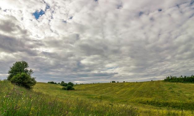 Landweg in de buurt van groene bomen in een zonnige zomerdag
