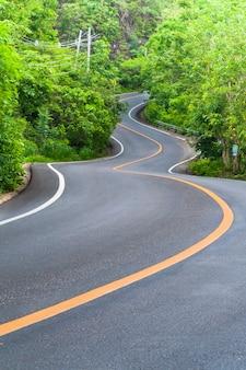Landweg met bomen aan beide zijden, bocht van de weg