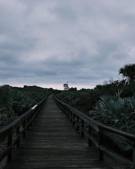 Lang shot van een voetbrug omgeven door suikerpalm op een strand onder bewolkte luchten