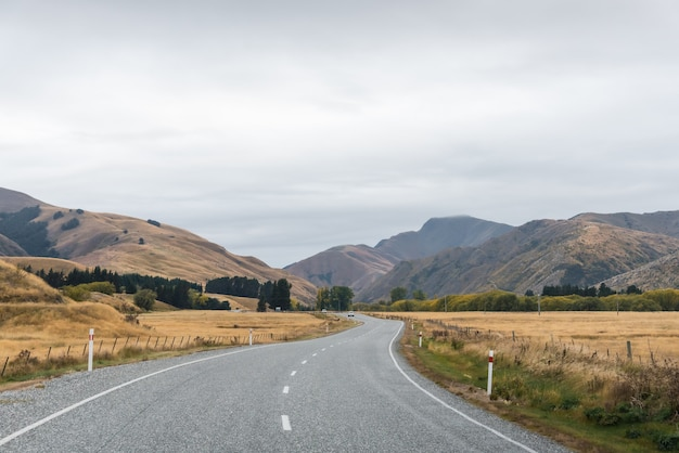 Lange weg in gele grasvallei met hemel en witte wolk