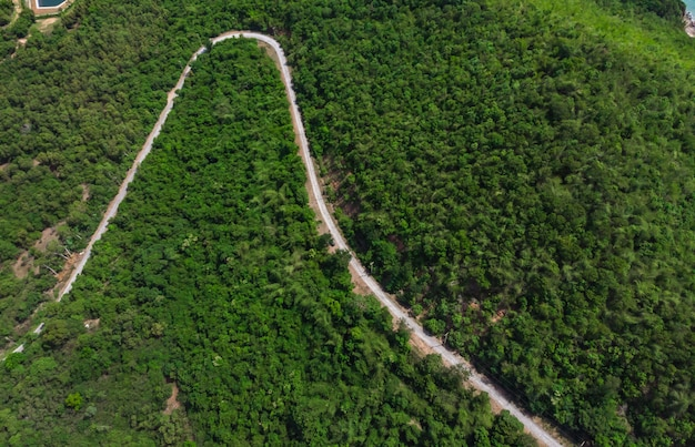 Lange weg in het bos op de berg hoge hoek uitzicht vanaf drone
