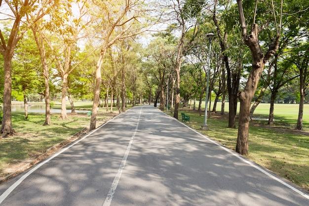 Lange weg met groen veld