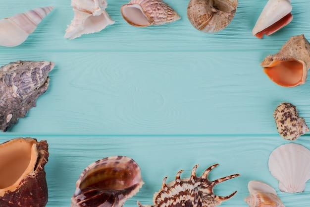 Langs de omtrek zijn verschillende zeeschelpen op een turkooizen achtergrond. verschillende vorm zeeschelpen.