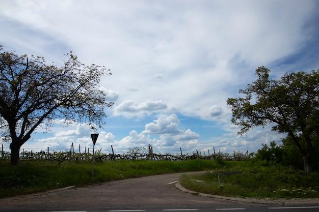 Langs de weg en prachtige bewolkte lucht in beweging vanuit het autoraam