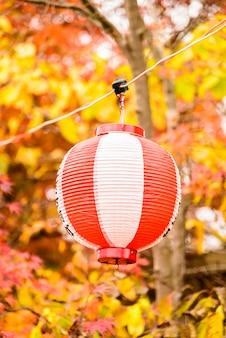 Lantaarn decoratieve achtergrond vietnam hoi