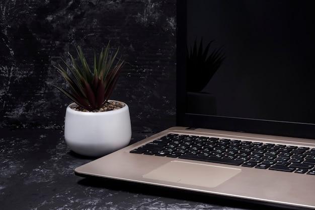 Laptop toetsenbord indoor bloem op tafel. het concept van werken op afstand.