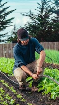 Latino boer werkt in zijn moestuin en installeert watersproeiers