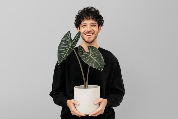 Latino plantouder met potalocasia