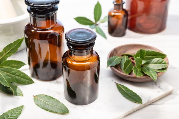 Laurierboom etherische olie op vintage apothekersfles. kruidenolie voor huidverzorging, aromatherapie en natuurlijke geneeskunde