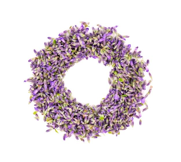 Lavendel bloemen, geïsoleerd op een witte achtergrond
