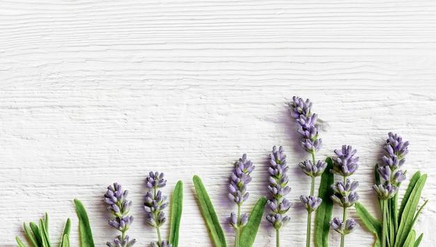 Lavendel bloemen op witte houten achtergrond