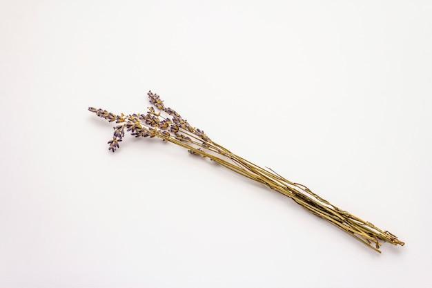 Lavendel droge bloem die op witte achtergrond wordt geïsoleerd. een bos gebonden met touw