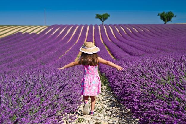Lavendel veld