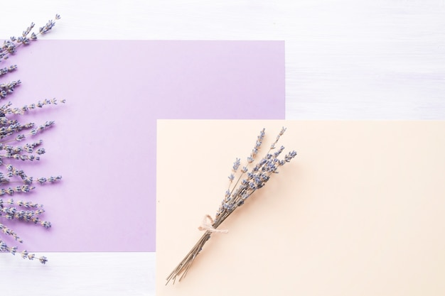 Lavendelbloem over het purpere en perzikdocument op achtergrond
