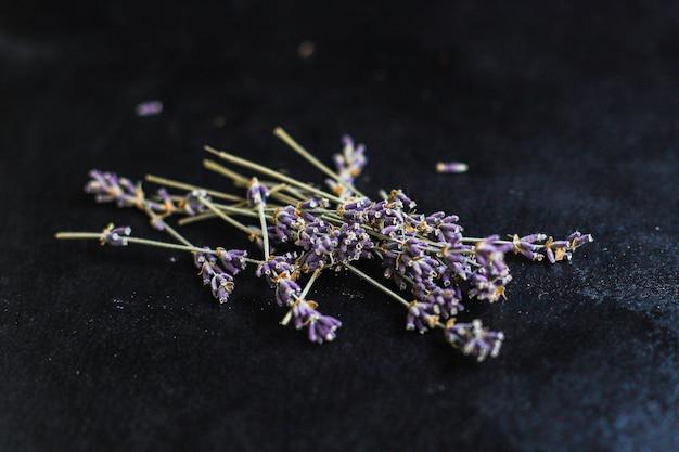Lavendelbloemen en zaden van geurige bloem