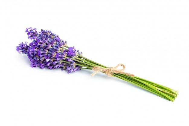 Lavendelbloemen op witte achtergrond