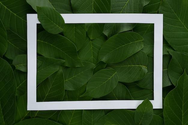 Lay-out gemaakt van bladeren