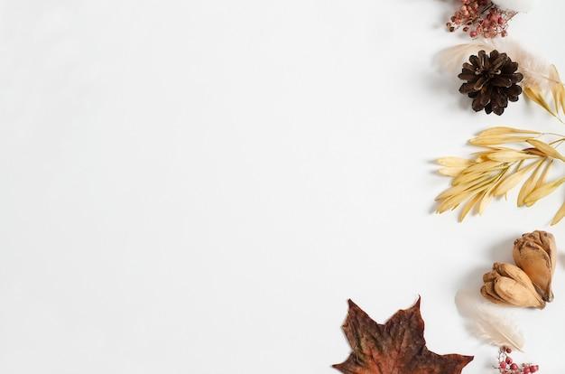 Lay-out van herfst droge materialen van verschillende bomen op een witte achtergrond. kopieer ruimte, plat leggen, herfst frame concept