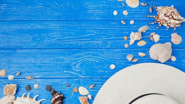 Lay-out van zeeschelpen en hoed