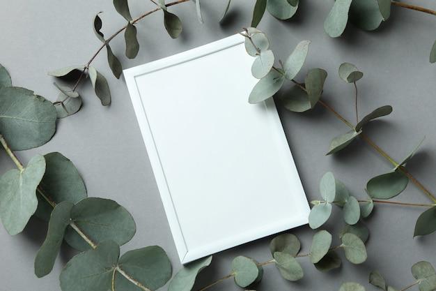 Leeg frame en eucalyptus op grijze achtergrond