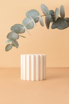 Leeg geometrisch podium op isometrische pastelachtergrond verse eucalyptustak van bovenaf zoals arch