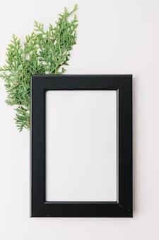 Leeg houten frame met cedertakje dat op witte achtergrond wordt geïsoleerd