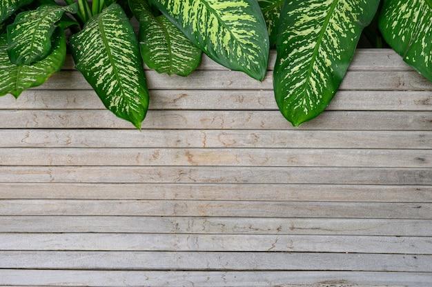 Leeg houten plank en blad