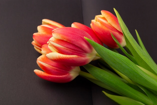 Leeg open zwart dagboek (notitieboek, schetsboek) versierd met lente rode tulpen met ruimte voor tekst of belettering. concept van het schrijven van memoires, herinneringen, levensverhaal. compositie voor memorial day.
