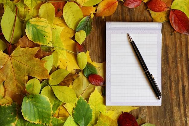 Leeg papier op herfstbladeren achtergrond en pen