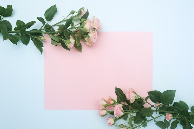 Leeg roze vel papier en knoppen van roze rozen, feestelijke achtergrond, kopie ruimte