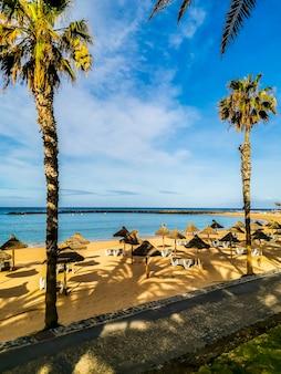 Leeg strand met alle ligbedden opgestapeld voor gesloten seizoen en nul toeristen situatie omdat coronavirus wereldwijde noodsituatie is afgesloten