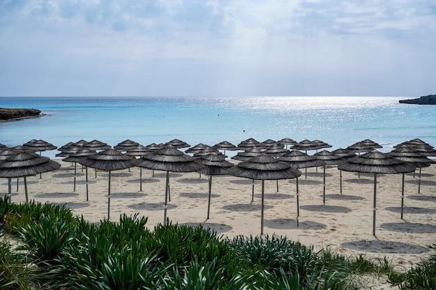 Leeg strand met parasols in de ochtend