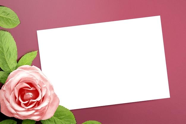 Leeg wit papier en roze roos met een gekleurde muur. valentijnsdag. lege ruimte voor exemplaarruimte