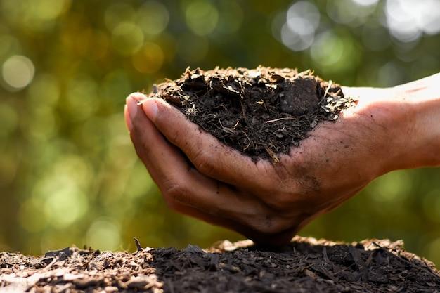 Leem in de handen van mannen om te planten