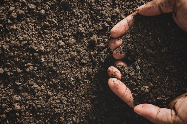 Leem in de handen van mannen voor het planten.