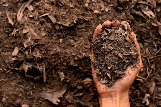 Leem in de handen van mannen voor opplant, bodemtextuur.